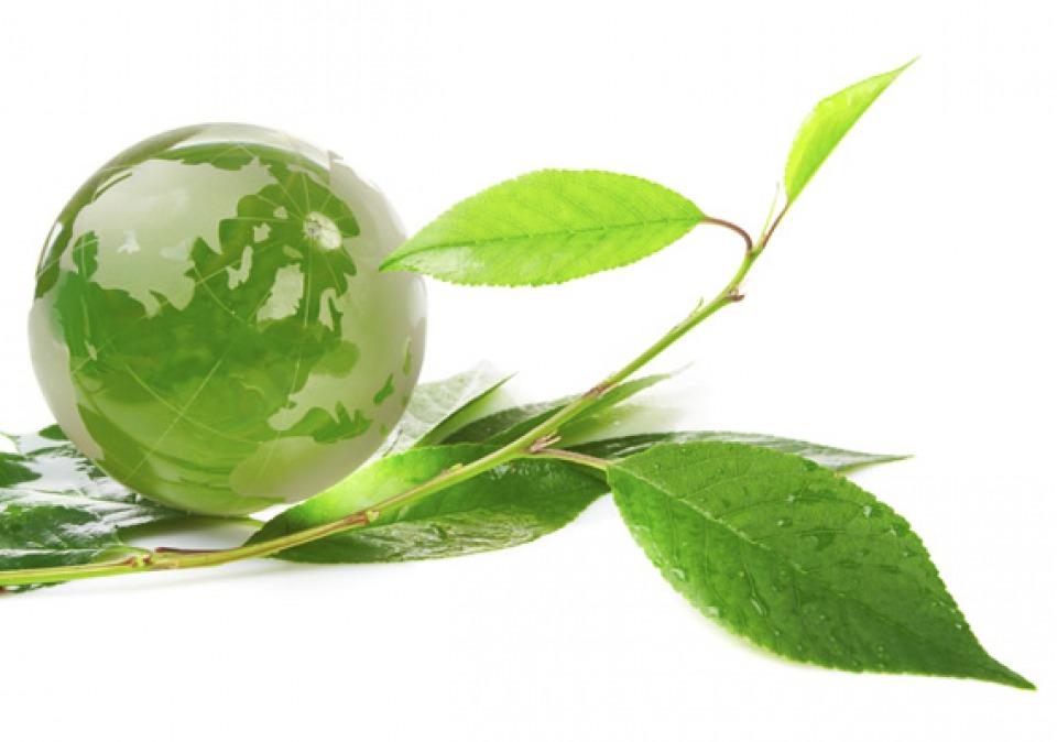 environmental-sustainability_3120-265c841a133b54b41792b006829b2b70.jpg