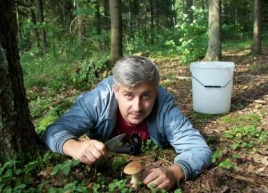 mushroom-picking_3040-5b02cbe86f8173fa5870033b79782161.jpg